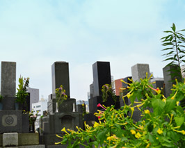 真英寺墓所